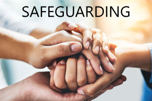 Safeguarding link